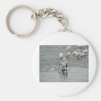 Pelicans Key Chains
