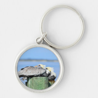Pelicans Resting Silver-Colored Round Key Ring