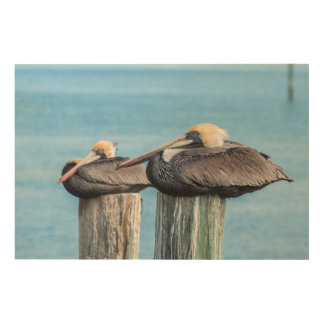 Pelicans roosting on pylon 2 wood wall decor