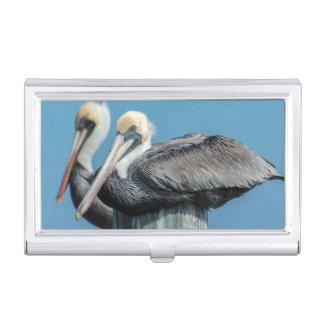 Pelicans roosting on pylon business card holder