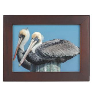 Pelicans roosting on pylon keepsake box