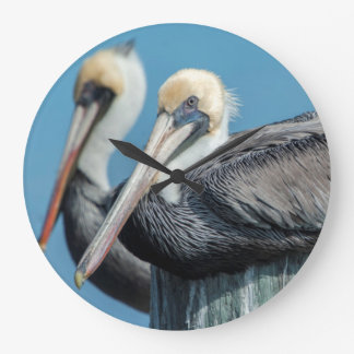 Pelicans roosting on pylon large clock