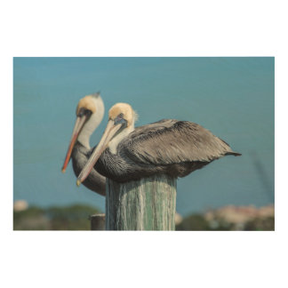 Pelicans roosting on pylon wood wall decor