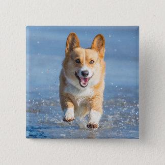 Pembroke Welsh Corgi Dog Running On The Beach 15 Cm Square Badge