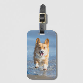 Pembroke Welsh Corgi Dog Running On The Beach Luggage Tag