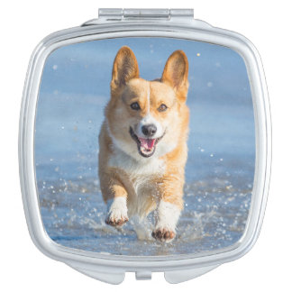 Pembroke Welsh Corgi Dog Running On The Beach Mirror For Makeup