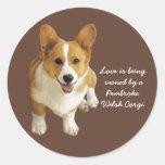 Pembroke Welsh Corgi Happy Sticker