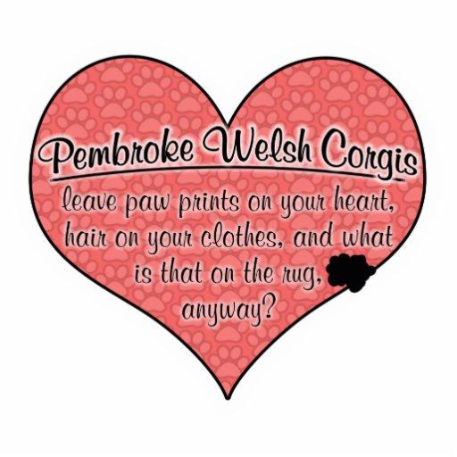 Pembroke Welsh Corgi Paw Prints Dog Humor Photo Sculpture