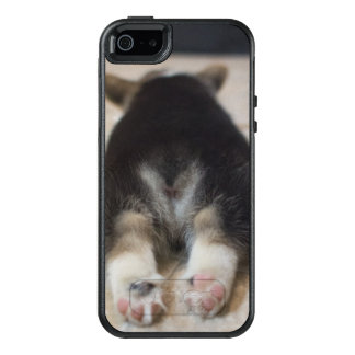 Pembroke Welsh Corgi Puppy 2 OtterBox iPhone 5/5s/SE Case