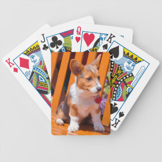 Pembroke Welsh Corgi puppy sitting in park bench Bicycle Playing Cards