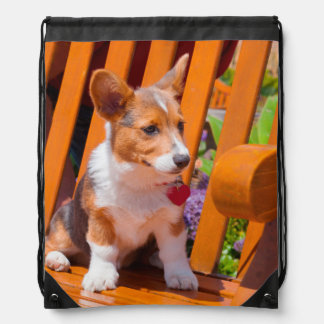 Pembroke Welsh Corgi puppy sitting in park bench Drawstring Bag