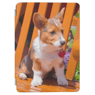 Pembroke Welsh Corgi puppy sitting in park bench iPad Air Cover