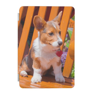Pembroke Welsh Corgi puppy sitting in park bench iPad Mini Cover
