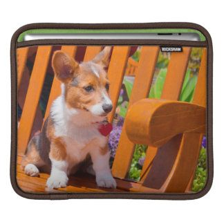 Pembroke Welsh Corgi puppy sitting in park bench iPad Sleeve
