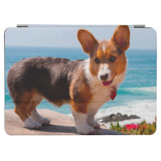 Pembroke Welsh Corgi puppy standing on table iPad Air Cover