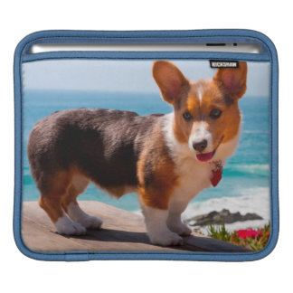Pembroke Welsh Corgi puppy standing on table iPad Sleeve