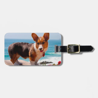 Pembroke Welsh Corgi puppy standing on table Luggage Tag