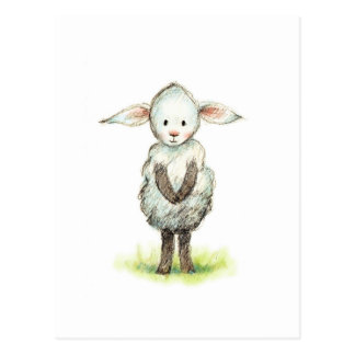 Pencil and watercolor drawing of cute little sheep postcard