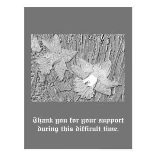 Pencil Daffodils Thanks for Your Support Postcard