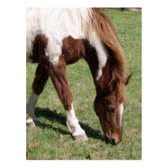 pencil horse postcard