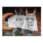 Pencil Vs Camera - Crazy Donkeys