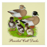 Penciled Call Duck Family Posters