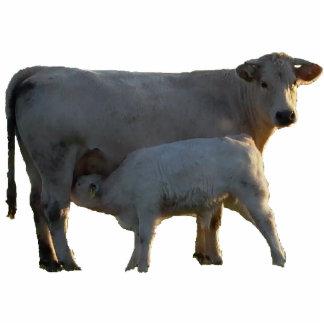 Pendant cow and calf photo sculpture decoration