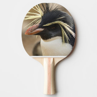 penguin-86.jpg Ping-Pong paddle