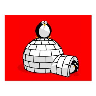Penguin and Igloo Postcard