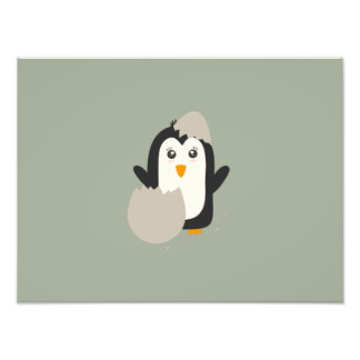 Penguin baby photograph