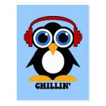 penguin chillin