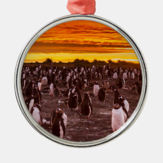 Penguin colony at sunset, Falkland Silver-Colored Round Decoration