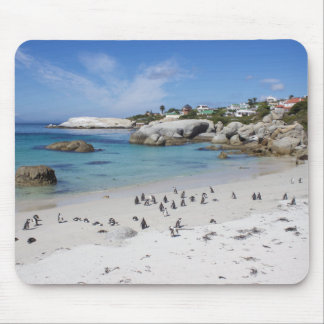 Penguin Colony on Boulders Beach, South Africa Mouse Pad
