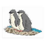 Penguin Couple Sandy Beach Postcard