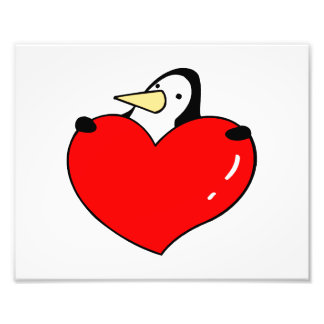 Penguin holding red heart cute design photograph