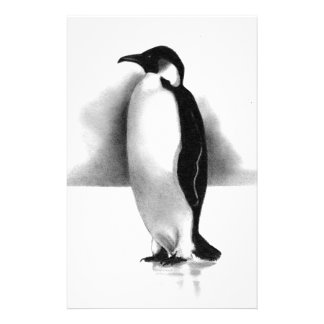 PENGUIN IN PENCIL: REALISM ART STATIONERY