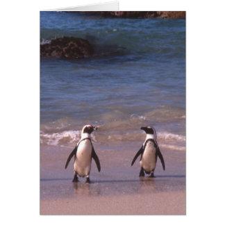 Penguin Pair on the beach Card