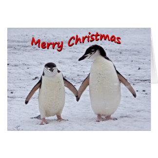 Penguin Pals Christmas Card