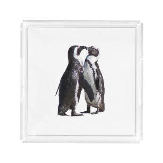 Penguin Romance Acrylic Tray