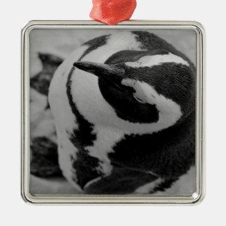 Penguin Silver-Colored Square Decoration