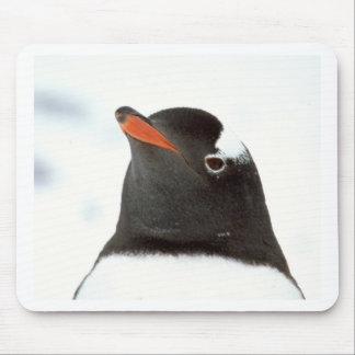 Penguin-tastic Mouse Mat
