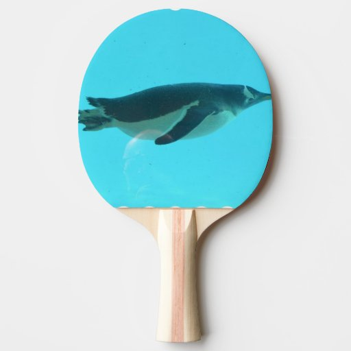 Penguin Underwater Ping-Pong Paddle