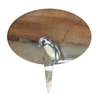 Penguin, Wildlife, Animal, Wild Bird, Zoo, Summer Cake Toppers