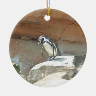 Penguin, Wildlife, Animal, Wild Bird, Zoo, Summer Round Ceramic Decoration