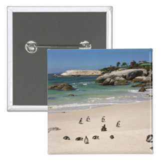 Penguins at Boulders Beach, Simons Town, South 15 Cm Square Badge