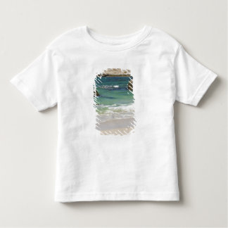 Penguins at Boulders Beach, Simons Town, South 2 Toddler T-Shirt