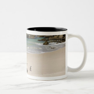 Penguins at Boulders Beach, Simons Town, South Two-Tone Coffee Mug