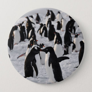 Penguins at Play 10 Cm Round Badge