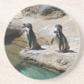 Penguins Coaster