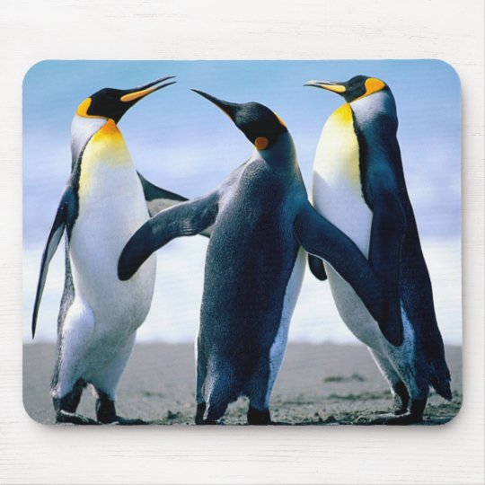 Penguins: Colourful Penguin Mousepad or Mouse Pad